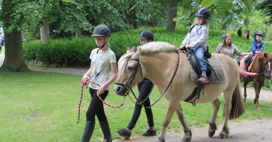 Hest og børn til dyrenes dag i Slagelse